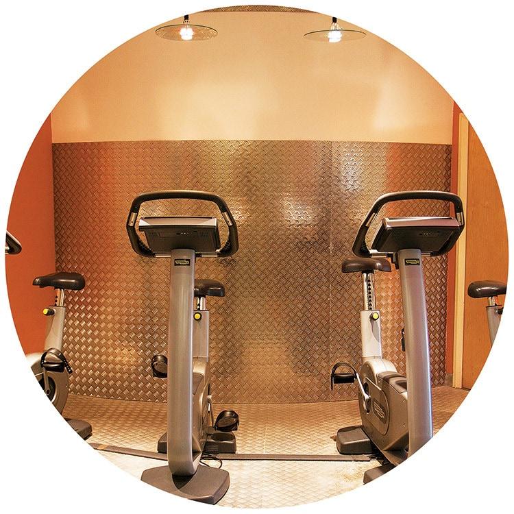 Great Hadham Country Club cycles gym equipment