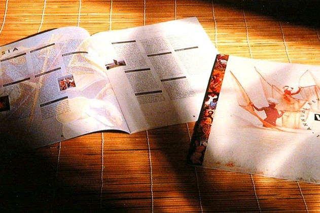 Sun gleaming on the front cover and open spread of VSO annual accounts brochure design