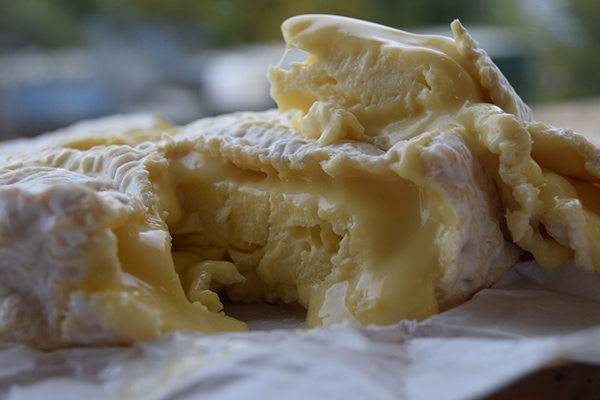 Original close-up of melted Baron cheese for Cheese+