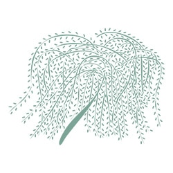 The Willows Nursing Home Logo Headshot